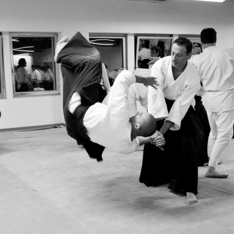 L'Aïkido et les autres Arts Martiaux